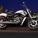 Harley-Davidson-V-rod-Muscle-2014-branca