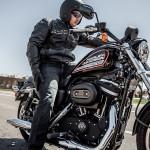 harley-davidson-883-roadster-2014-cores