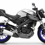 Yamaha-MT125-Race-Blu